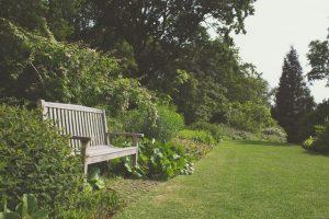 aménagement jardin chatou