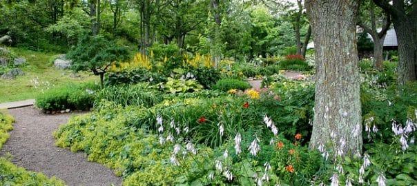 aménagement jardin montesson