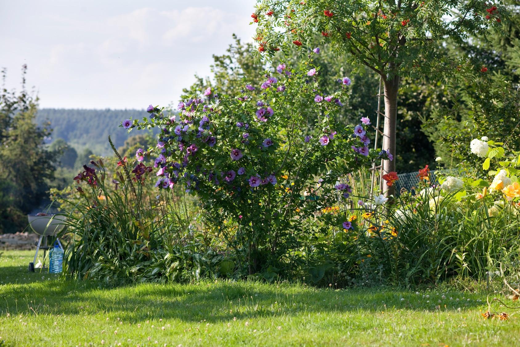 entretenir-jardin-septembre